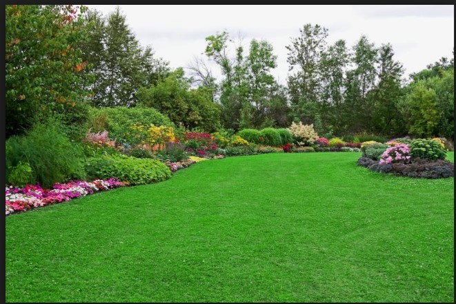 Simple Steps To Get Your Landscaping Project Off The Ground